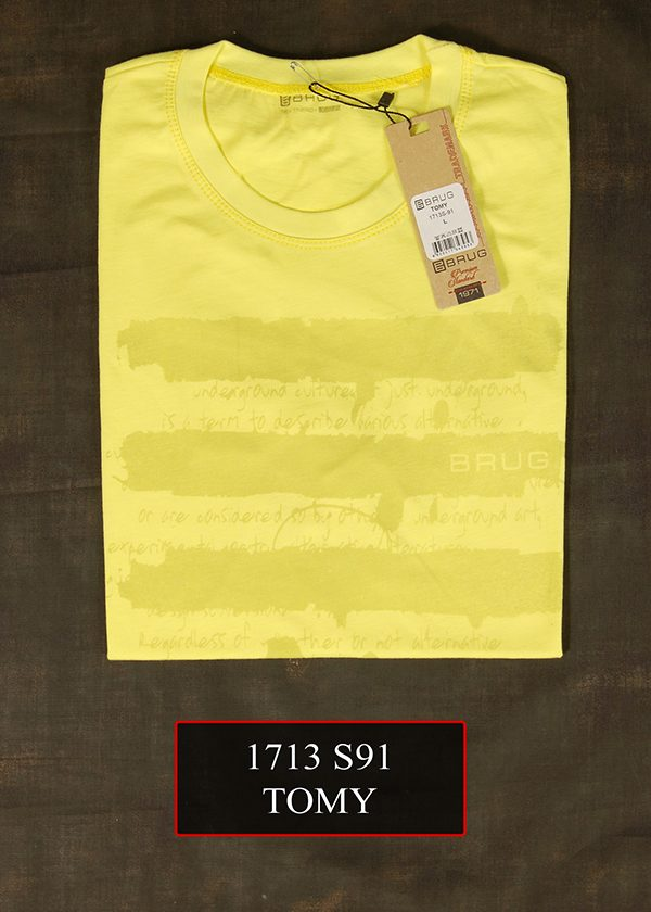 1713 S91 TOMY